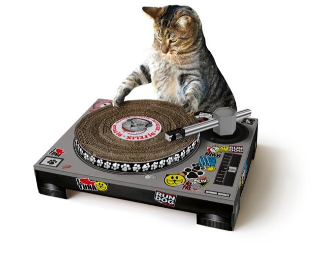 11835_catscratch-with-cat1